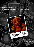 Medvídek (2009)