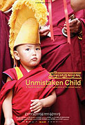 Unmistaken Child (2008)