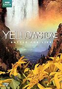 Yellowstonský národní park (2009)
