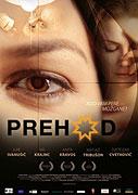 Prehod (2008)