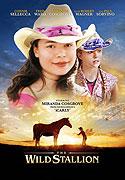 Divoký hřebec (2009)
