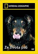 Ze života psů (2007)