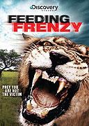 Hladoví lvi (2008)