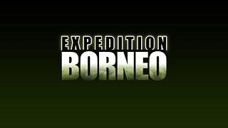 Expedice Borneo (2007)