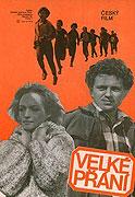 Velké přání (1981)