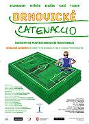 Drnovické catenaccio aneb Cesta do pravěku ekonomické transformace (2010)