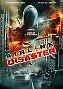 Únos letadla (2010)
