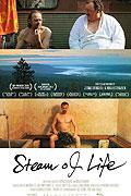 """Nazí v sauně<span class=""""name-source"""">(festivalový název)</span> (2010)"""