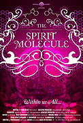 DMT: Spirit Molecule, The (2010)