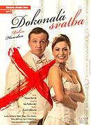Dokonalá svatba (2010)