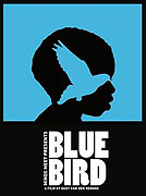 """Modrý pták<span class=""""name-source"""">(festivalový název)</span> (2011)"""