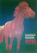 Divoký koník Ryn (1981)