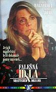 Falešná idyla (1990)