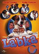 Tlapka (1997)