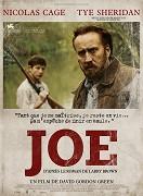 Joe (2013)