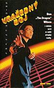Vražedný boj (1995)