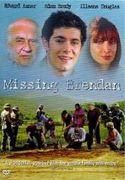 Nezvěstný syn (2003)