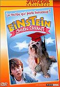 Snídaně s Einsteinem (1998)
