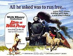Divoký poník (1976)
