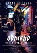Odnikud (2017)