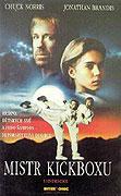 Mistr kickboxu (1992)