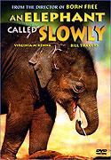 Obklíčeni slony (1969)