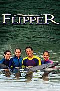 Delfín Flip (1995)