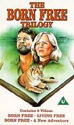 Volání divočiny (1974)