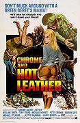 Chróm a horká kůže (1971)