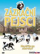 Zázrační pejsci (2003)