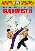 Krvavá pěst II (1990)