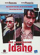 Mé soukromé Idaho (1991)