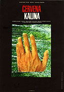 Červená kalina (1973)
