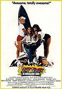 Zlaté časy na Ridgemont High (1982)