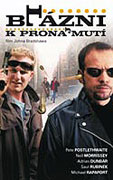 Blázni k pronajmutí (2002)