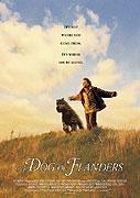 Flanderský pes (1999)