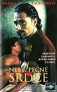 Nebezpečné srdce (1994)