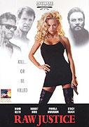 Souboj policajtů (1994)