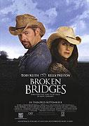 Zbořené mosty (2006)
