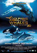 Delfíni a velryby 3D: tuláci oceánů (2008)