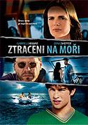 Dlouho hledaný syn (2006)