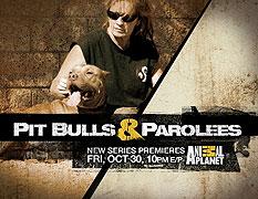 Pitbulové a propuštění trestanci (2009)