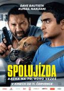 Spolujízda (2019)