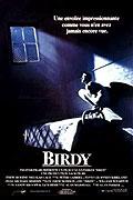 Křídla (1984)