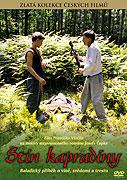 Stín kapradiny (1984)
