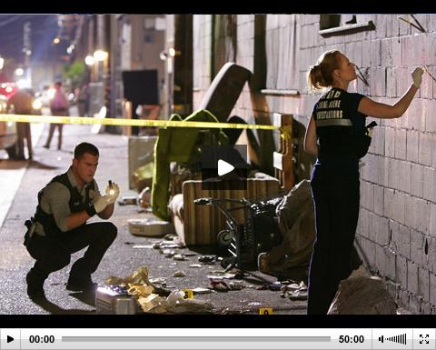 Kriminálka Las Vegas - 07x23 - Hodný, zlý a domina